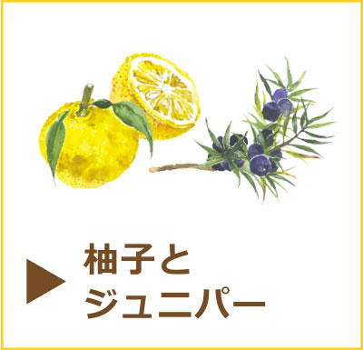 国産オーガニックコスメブランドtokotowa organics(トコトワ オーガニクス)
